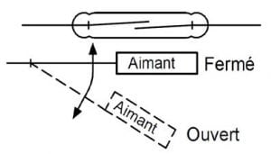 no6-jpc-protection-des-ampoules-reed-6